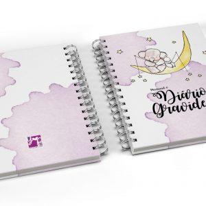 manual e diário de gravidez